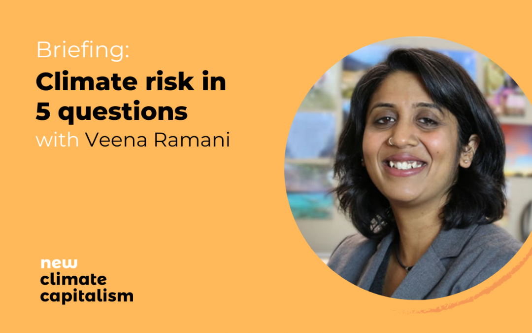 Briefing: Climate risk in 5 questions with Veena Ramani